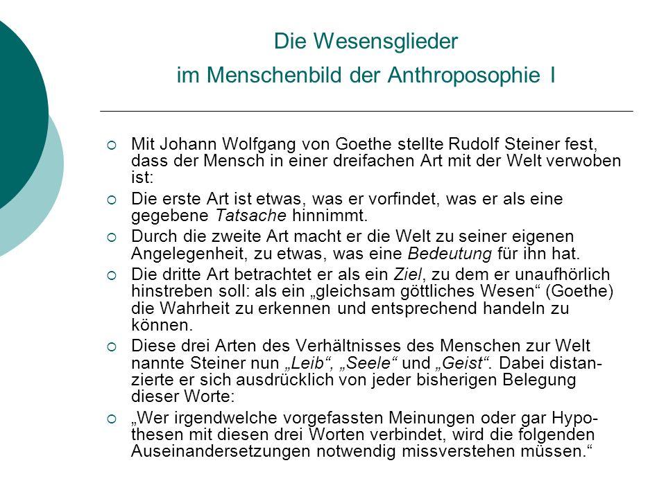 Die Wesensglieder im Menschenbild der Anthroposophie I