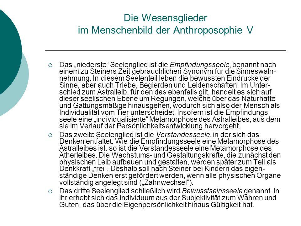 Die Wesensglieder im Menschenbild der Anthroposophie V