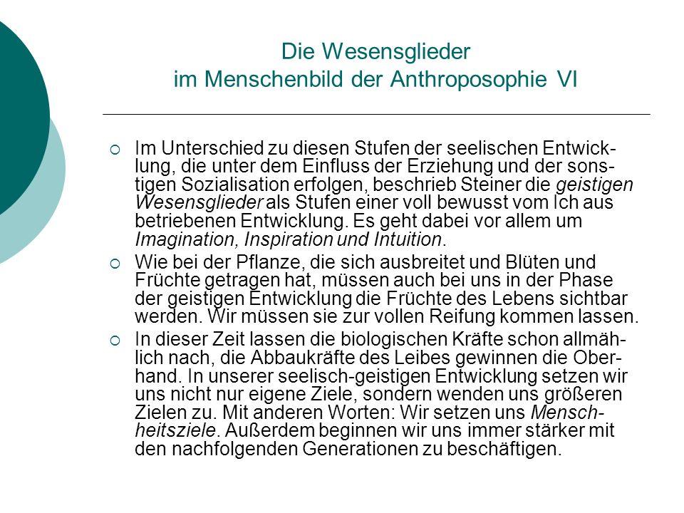 Die Wesensglieder im Menschenbild der Anthroposophie VI