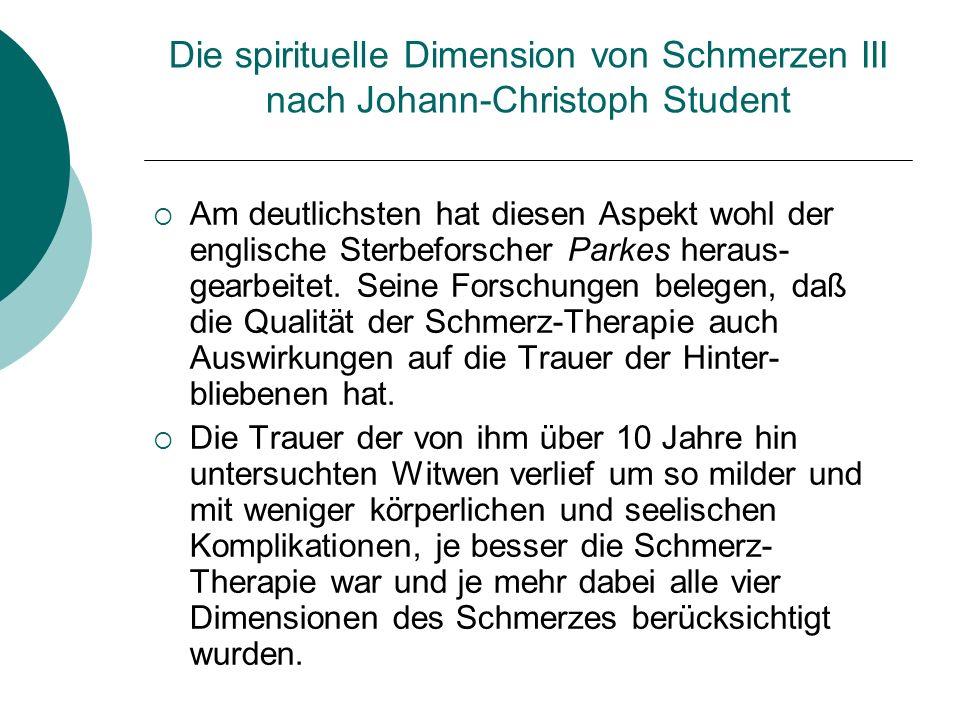 Die spirituelle Dimension von Schmerzen III nach Johann-Christoph Student