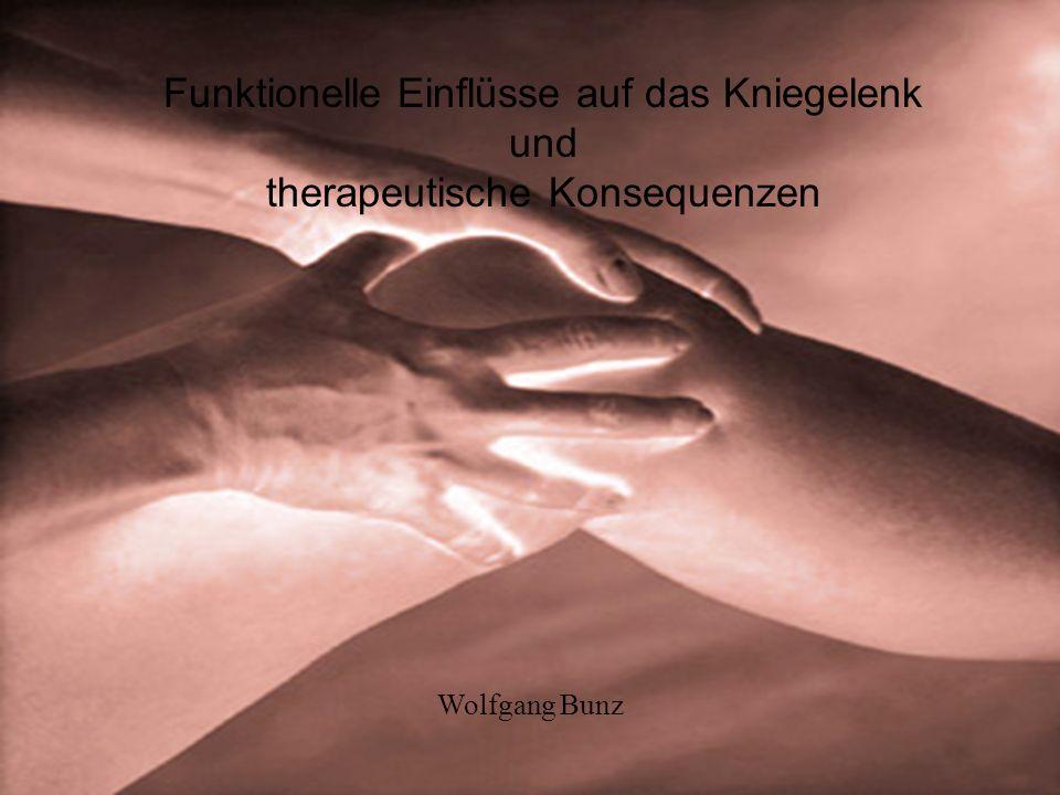 Funktionelle Einflüsse auf das Kniegelenk und