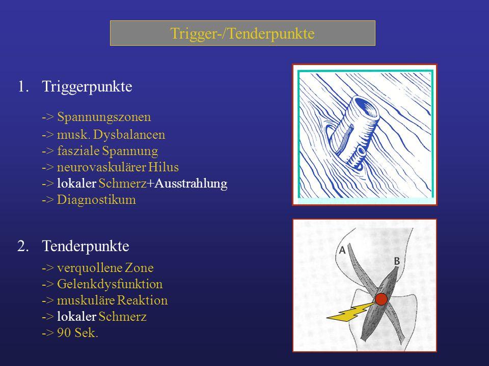 Trigger-/Tenderpunkte