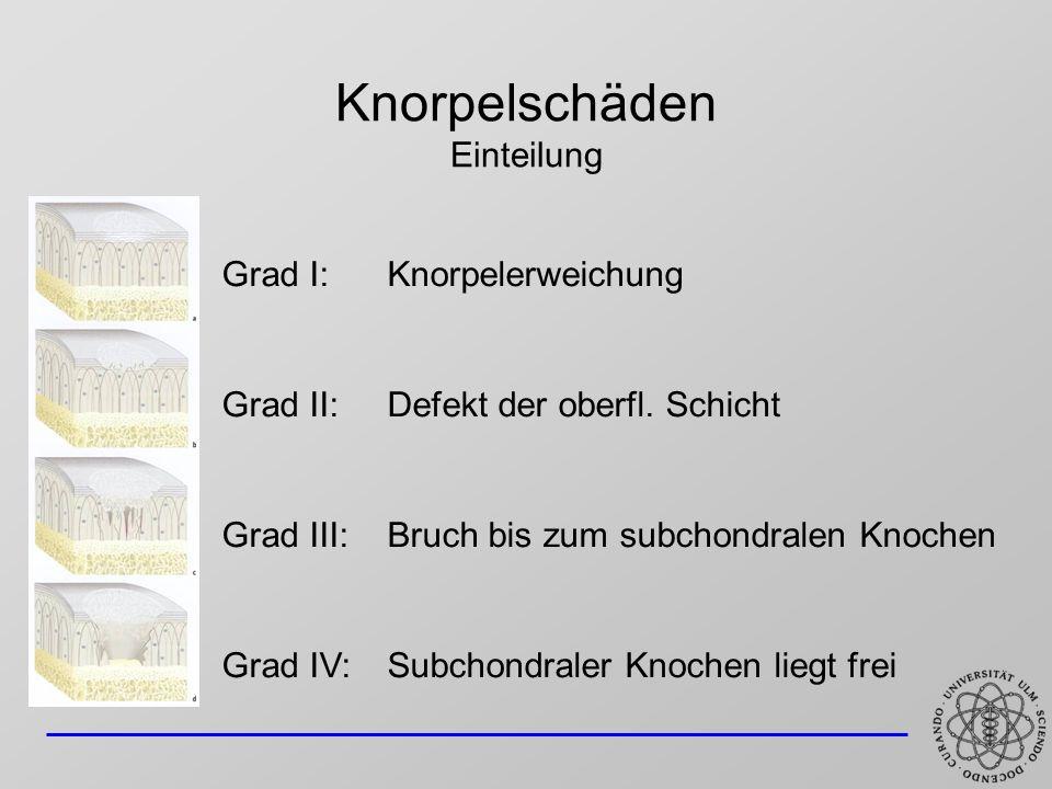 Knorpelschäden Einteilung Grad I: Knorpelerweichung