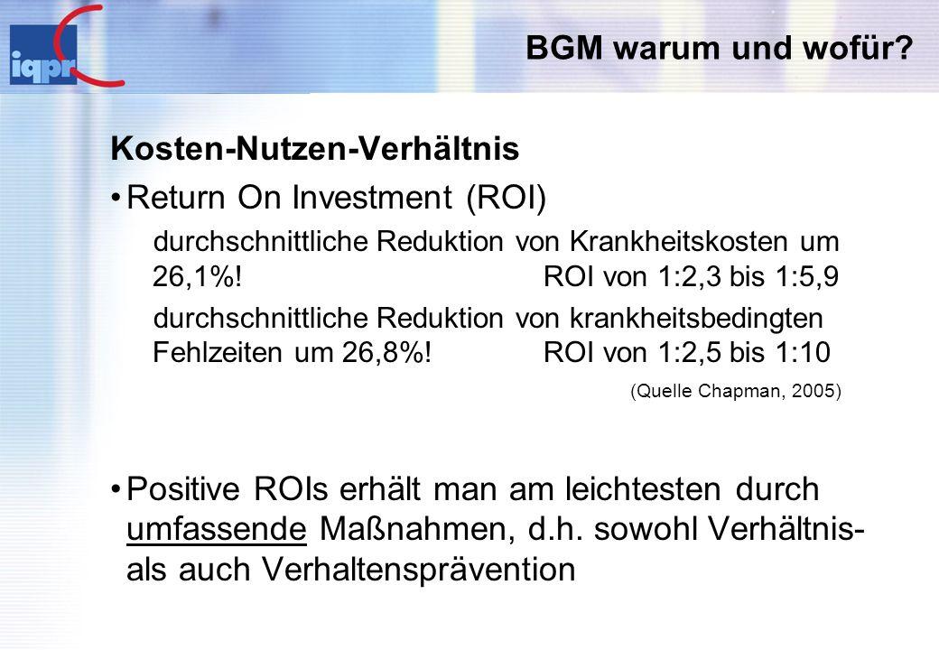 Kosten-Nutzen-Verhältnis Return On Investment (ROI)