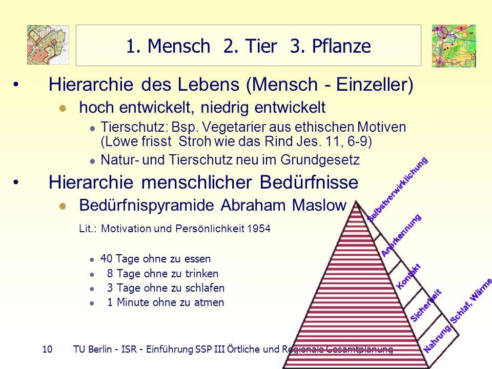 Hierarchie des Lebens (Mensch - Einzeller)