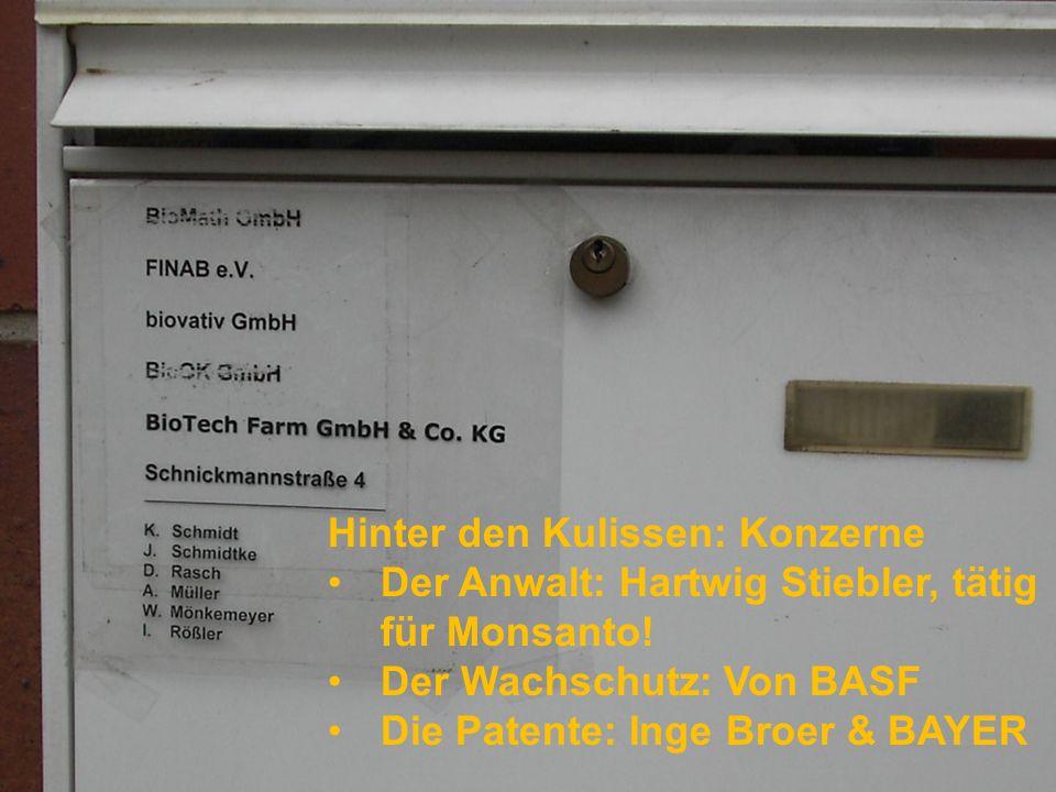 Ein Geflecht von Firmen und Behörden: BioOK!