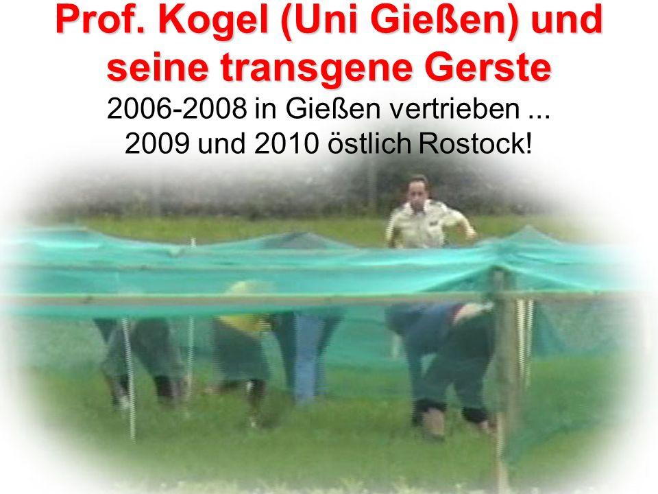 Prof. Kogel (Uni Gießen) und seine transgene Gerste 2006-2008 in Gießen vertrieben ... 2009 und 2010 östlich Rostock!