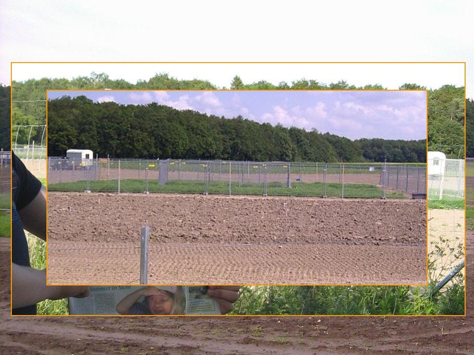 x Gerstenfeld 2009
