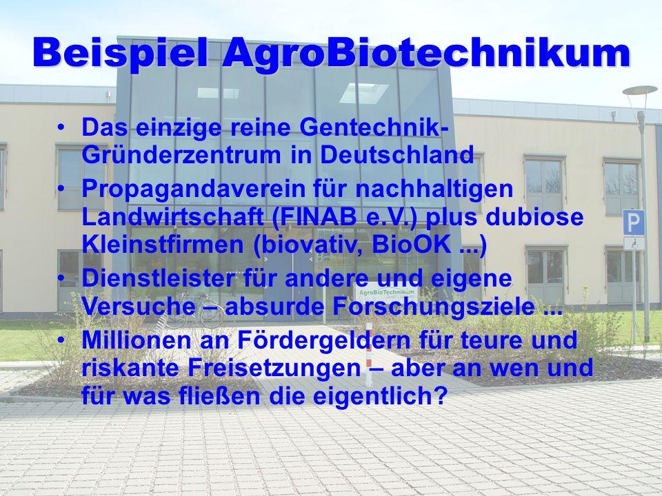 Beispiel AgroBiotechnikum