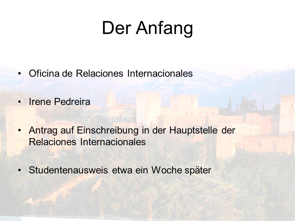 Der Anfang Oficina de Relaciones Internacionales Irene Pedreira