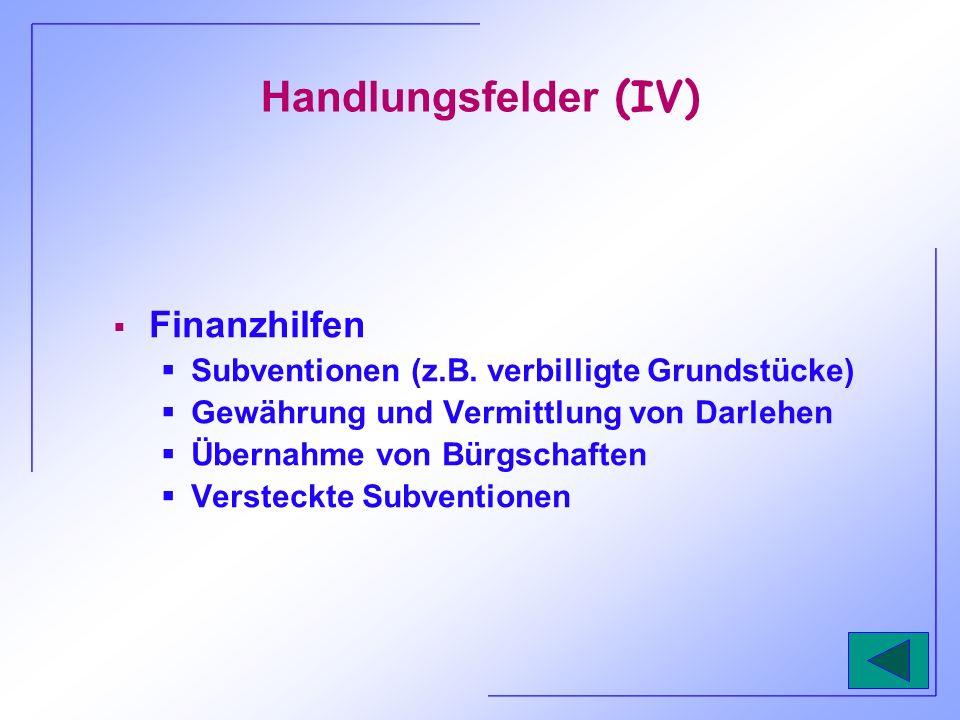 Handlungsfelder (IV) Finanzhilfen