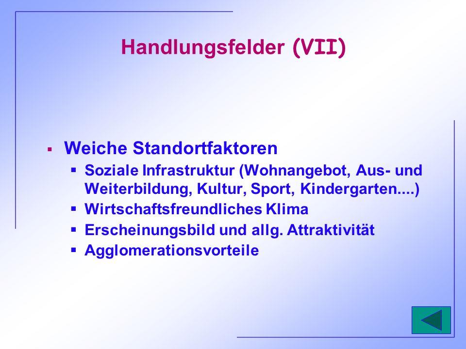 Handlungsfelder (VII)