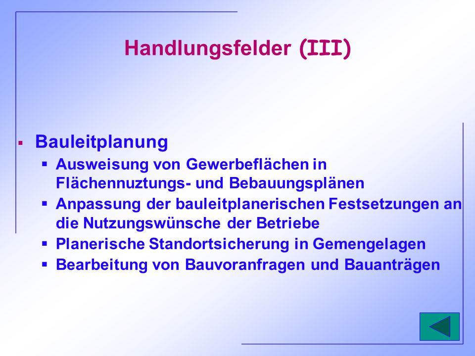 Handlungsfelder (III)