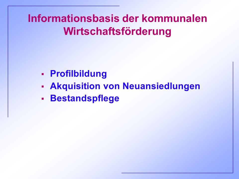 Informationsbasis der kommunalen Wirtschaftsförderung