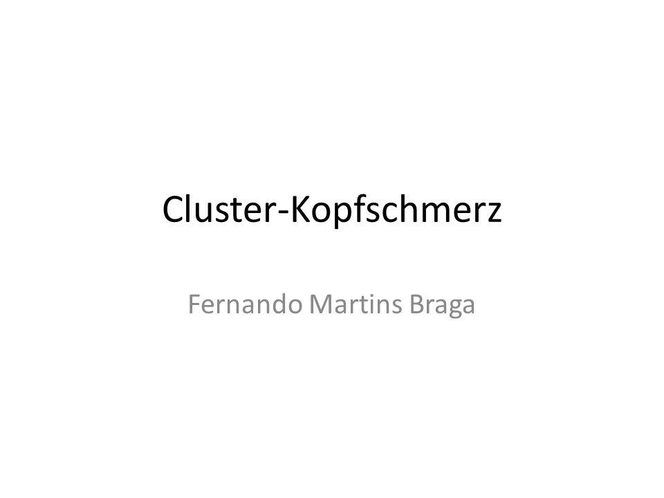 Fernando Martins Braga