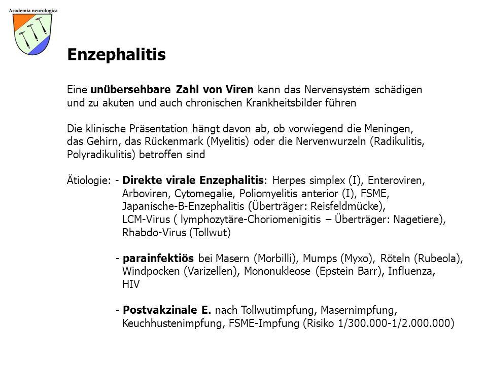 Enzephalitis Eine unübersehbare Zahl von Viren kann das Nervensystem schädigen. und zu akuten und auch chronischen Krankheitsbilder führen.