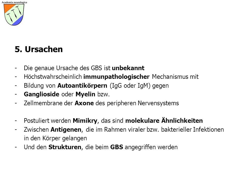 5. Ursachen - Die genaue Ursache des GBS ist unbekannt