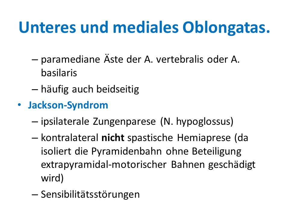 Unteres und mediales Oblongatas.