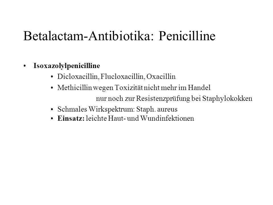 Betalactam-Antibiotika: Penicilline