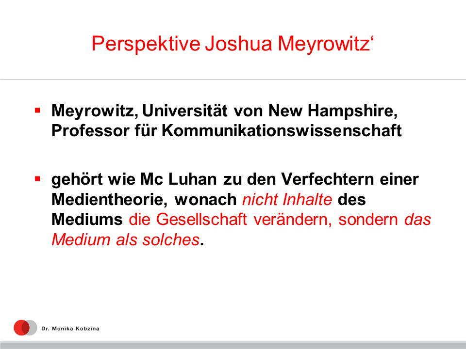 Perspektive Joshua Meyrowitz'