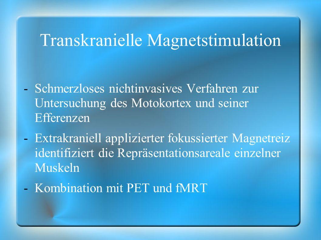 Transkranielle Magnetstimulation
