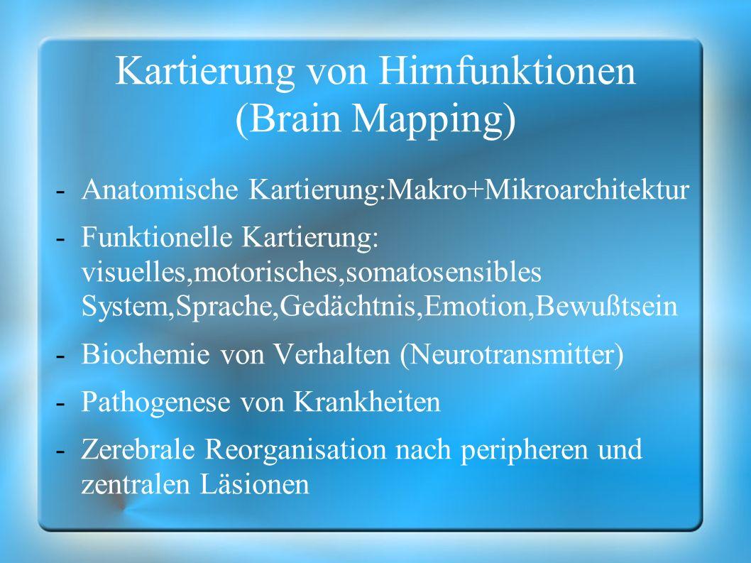 Kartierung von Hirnfunktionen (Brain Mapping)