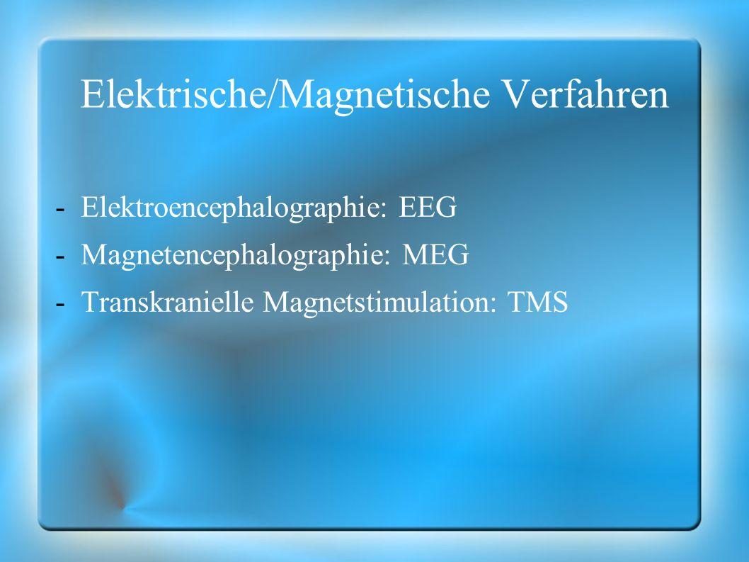Elektrische/Magnetische Verfahren