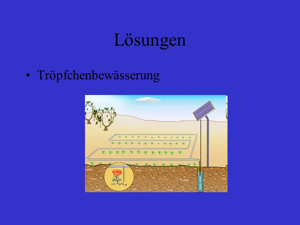 Lösungen Tröpfchenbewässerung