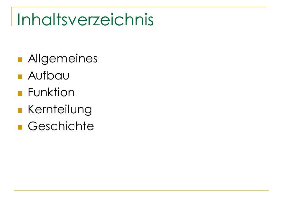 Inhaltsverzeichnis Allgemeines Aufbau Funktion Kernteilung Geschichte