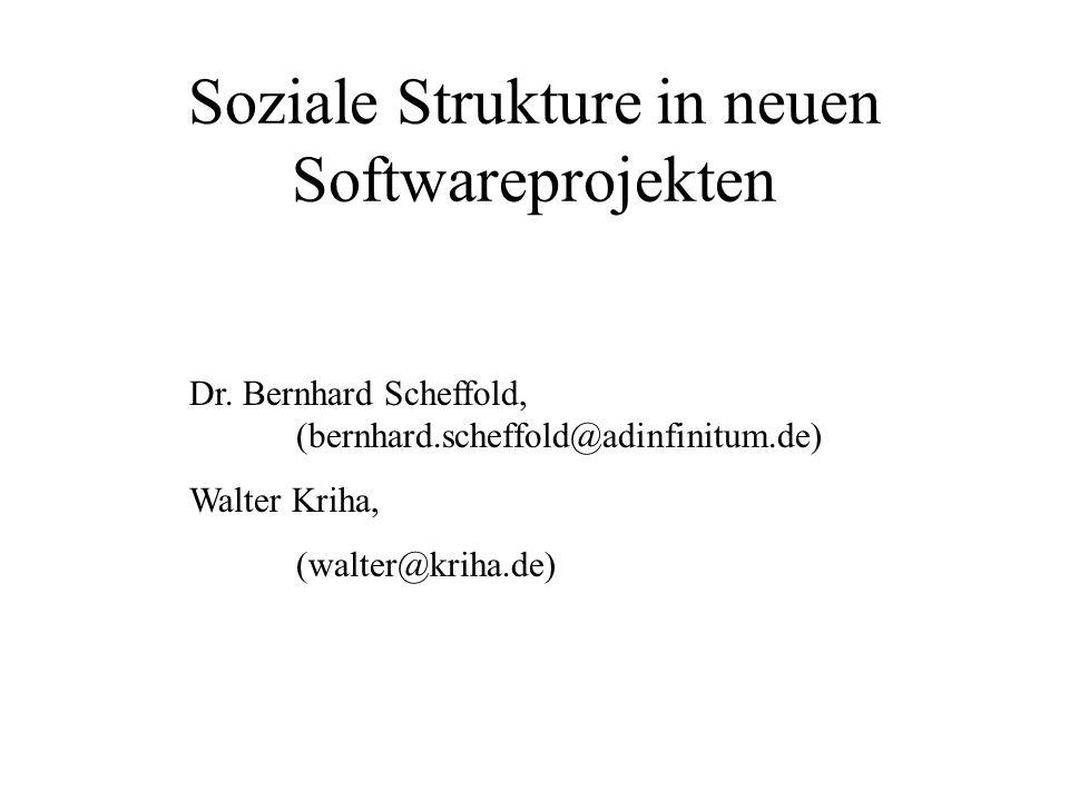 Soziale Strukture in neuen Softwareprojekten