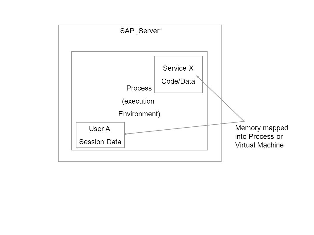 "SAP ""Server Process. (execution. Environment) Service X."