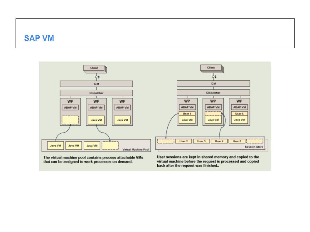 SAP VM
