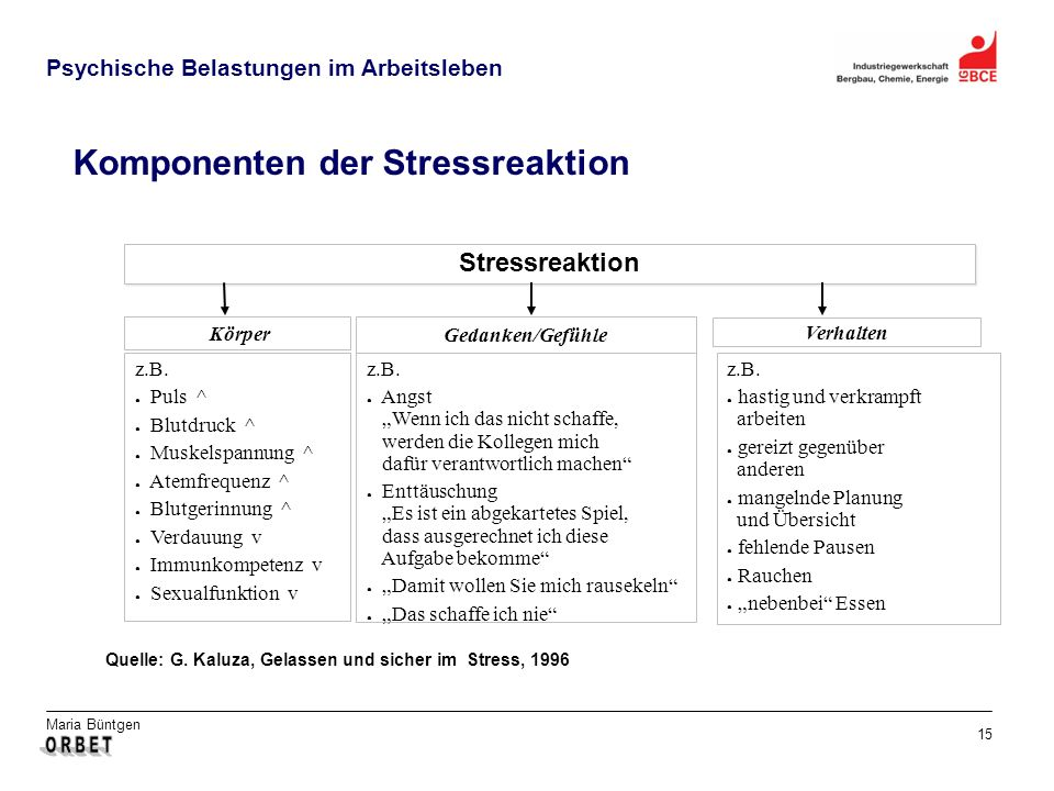 Komponenten der Stressreaktion