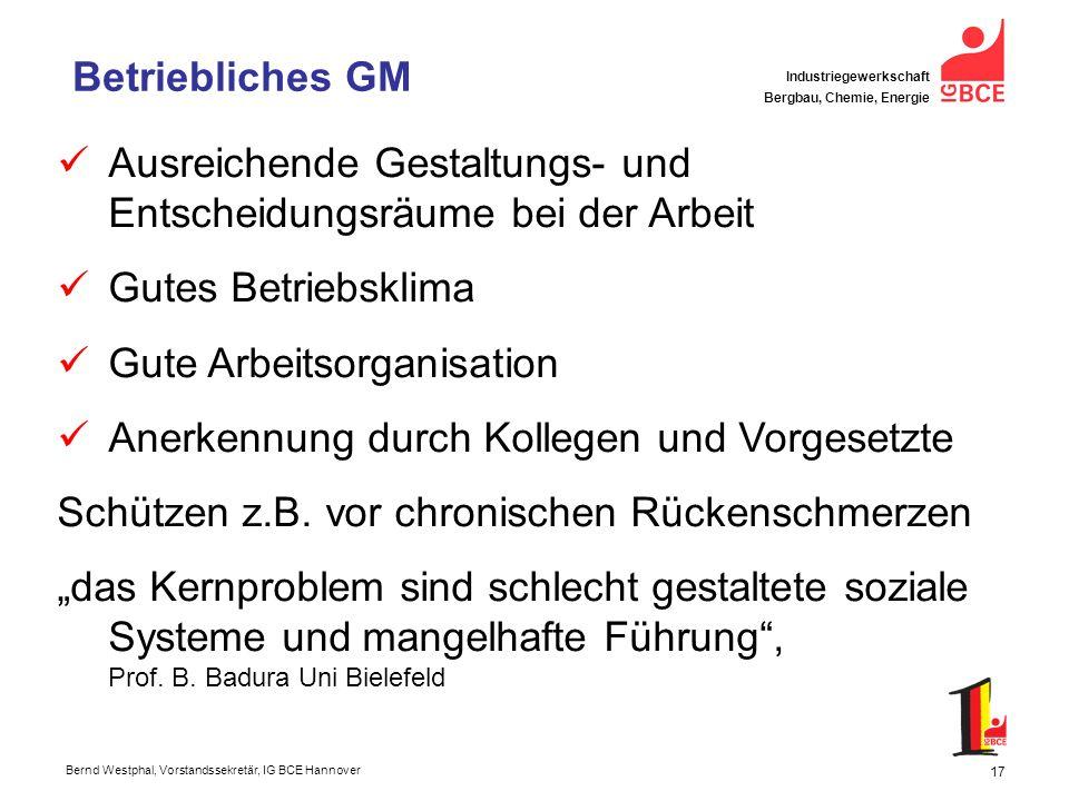 Betriebliches GM Ausreichende Gestaltungs- und Entscheidungsräume bei der Arbeit. Gutes Betriebsklima.