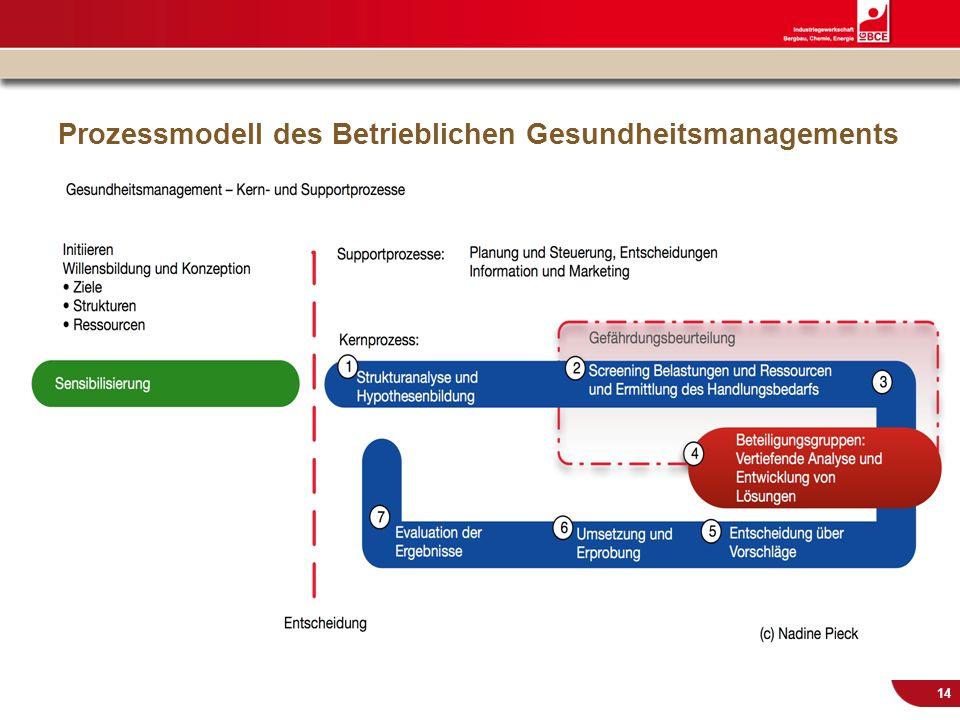Prozessmodell des Betrieblichen Gesundheitsmanagements