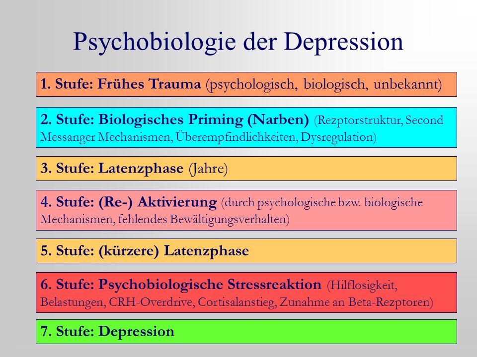 Psychobiologie der Depression