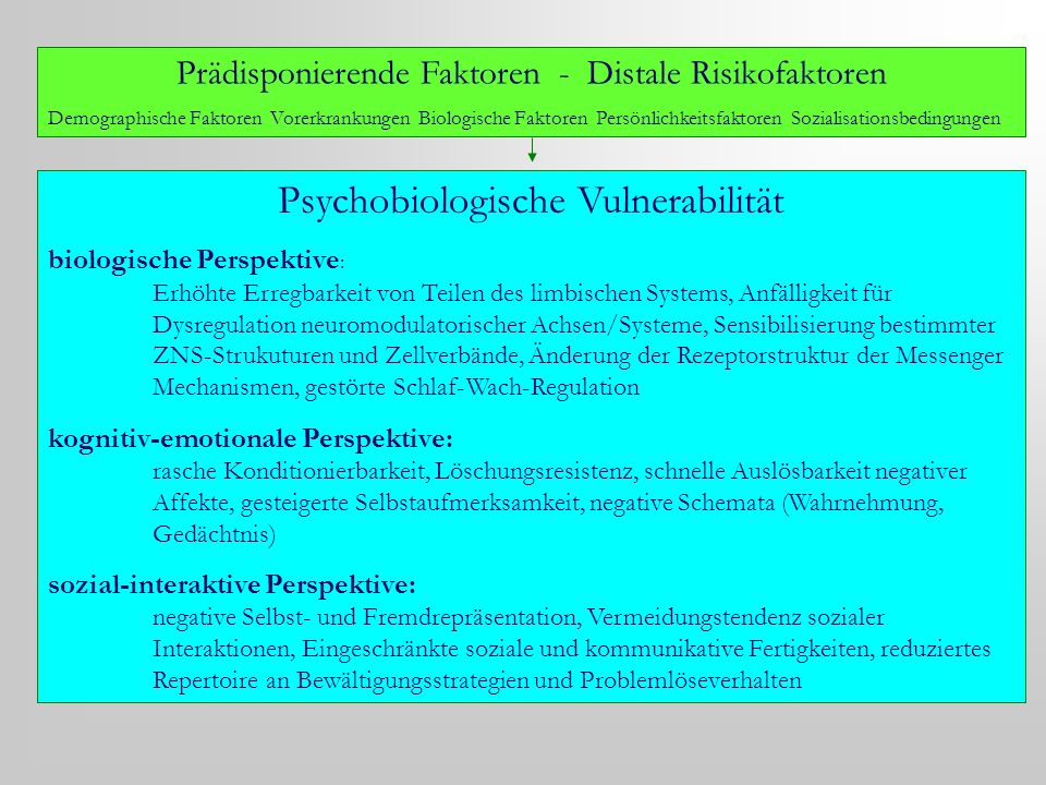 Psychobiologische Vulnerabilität