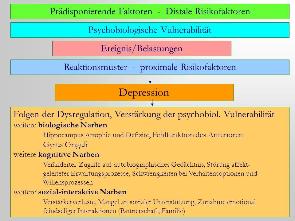 Depression Prädisponierende Faktoren - Distale Risikofaktoren