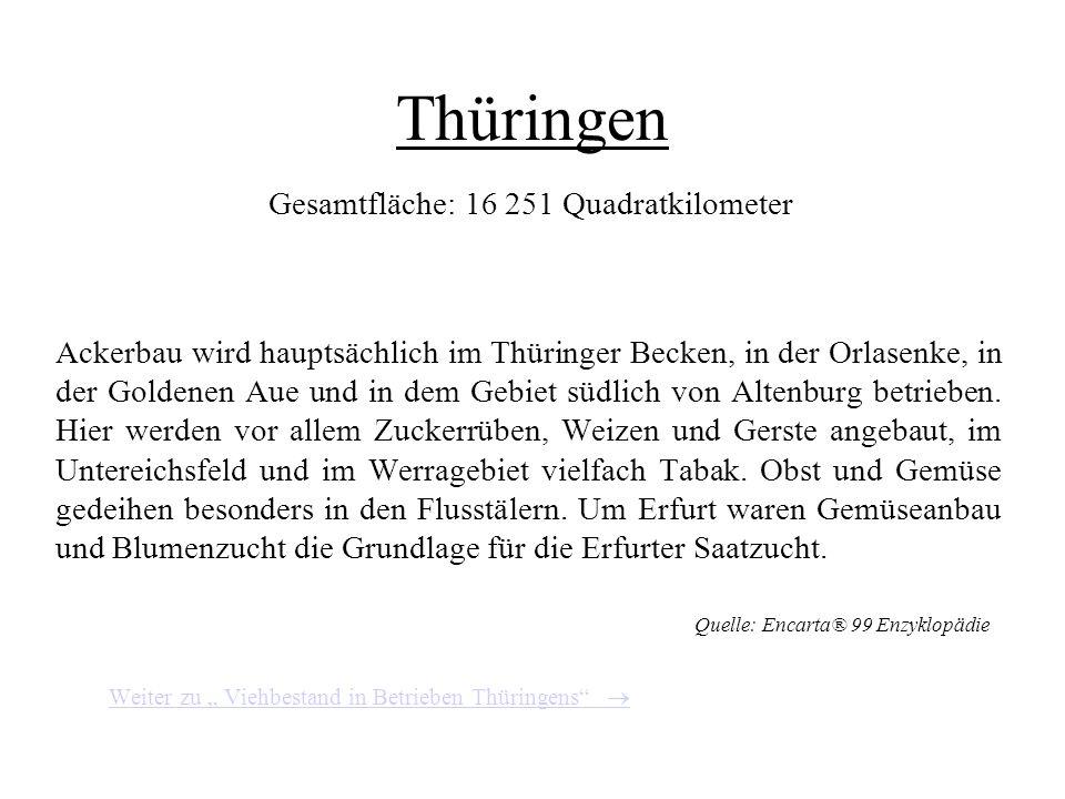 Thüringen Gesamtfläche: 16 251 Quadratkilometer