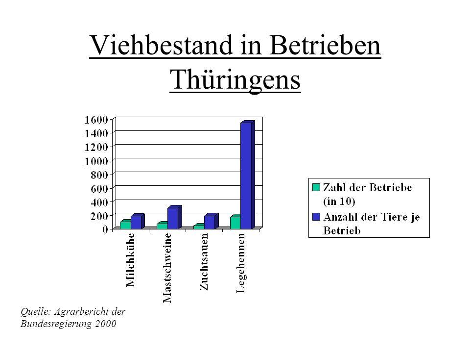 Viehbestand in Betrieben Thüringens