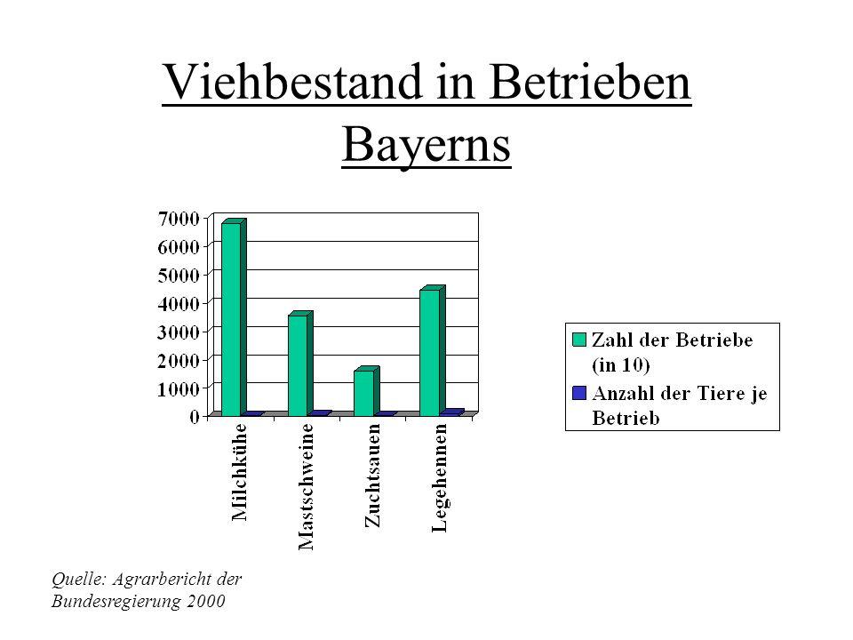 Viehbestand in Betrieben Bayerns