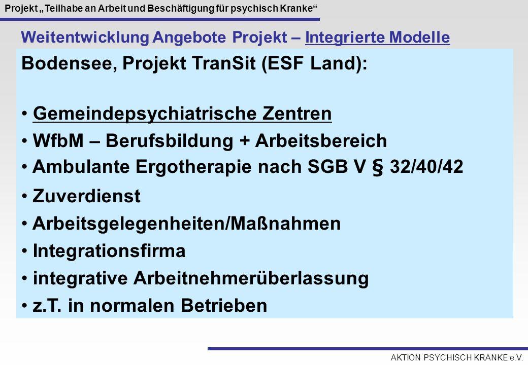 Bodensee, Projekt TranSit (ESF Land): Gemeindepsychiatrische Zentren