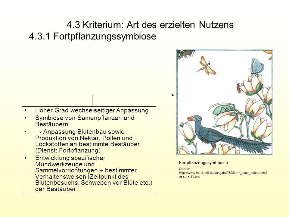4.3 Kriterium: Art des erzielten Nutzens