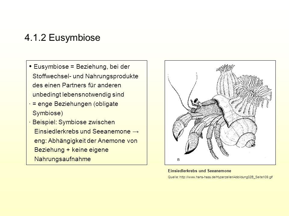 4.1.2 Eusymbiose ∙ Eusymbiose = Beziehung, bei der
