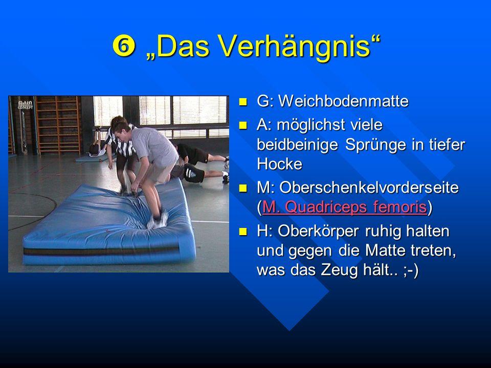 """ """"Das Verhängnis G: Weichbodenmatte"""