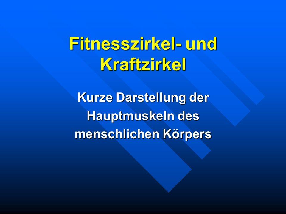 Fitnesszirkel- und Kraftzirkel