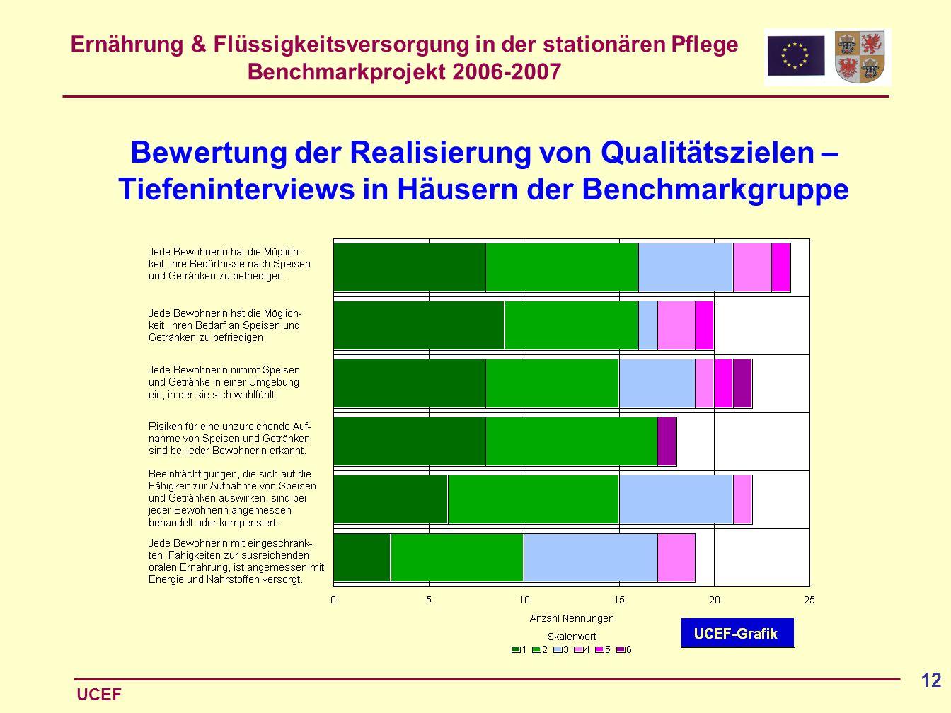Bewertung der Realisierung von Qualitätszielen – Tiefeninterviews in Häusern der Benchmarkgruppe
