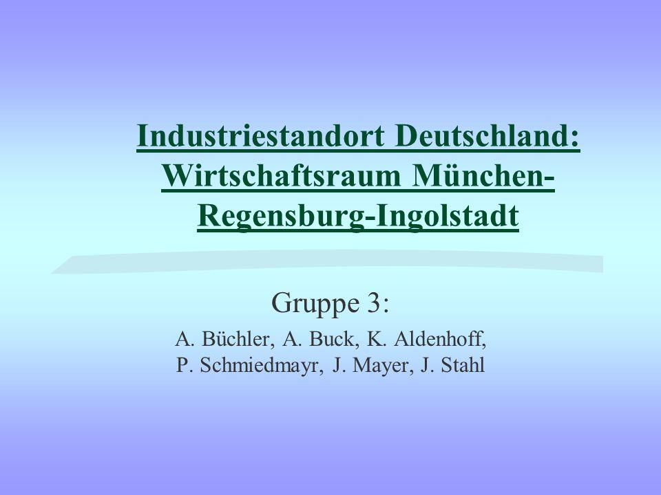 A. Büchler, A. Buck, K. Aldenhoff, P. Schmiedmayr, J. Mayer, J. Stahl