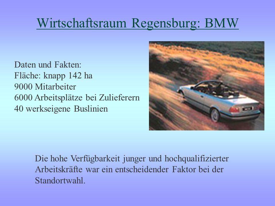 Wirtschaftsraum Regensburg: BMW