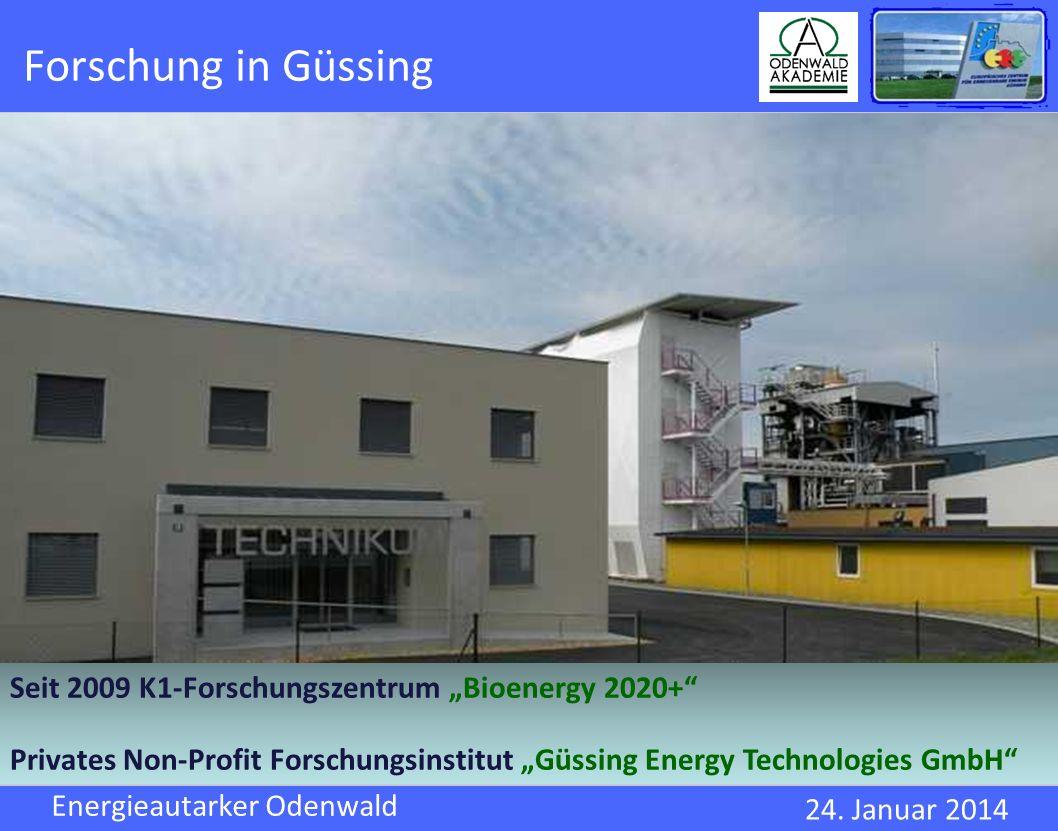 """Forschung in Güssing Seit 2009 K1-Forschungszentrum """"Bioenergy 2020+"""